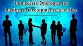 Business Develoment Executives