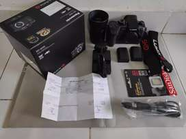 Lumix GH5 Panasonic Camera Like new