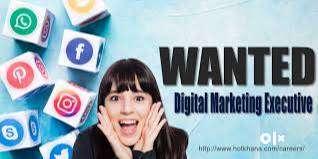 Digital Marketing Executive 0