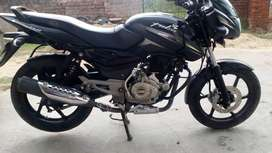 150cc Bajaj Pulsar For Sale in jaipur Bike Sale
