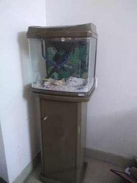 Fish tank forsale