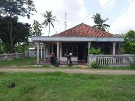 Rumah Murah Halaman Luas Sidareja Kedungreja Cilacap