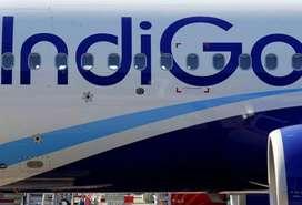 AIRPORT VACANCY IN INDIGO AIRLINES! INDIGO Airlines Job Opened-