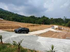 Kavling Villa Kebun Bonus Bibit Pohon Leci di Bogor Timur