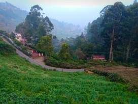 Farm house in 3 acres in Kodaikanal
