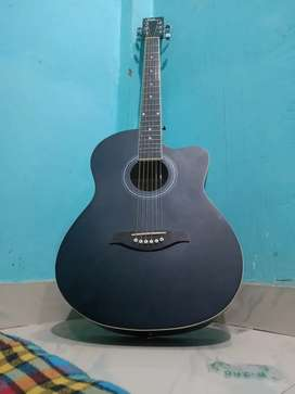 New guitar blueberry B40