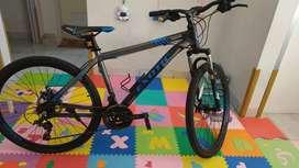Sepeda road bike excotic