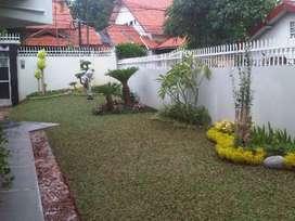 Tukang rumput taman hijau gajah mini
