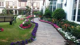 Landscaping, Gardening, 3D Designing, Farm Houses, Parks and Societies