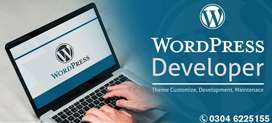 WordPress Development, theme customization, Website Maintenance