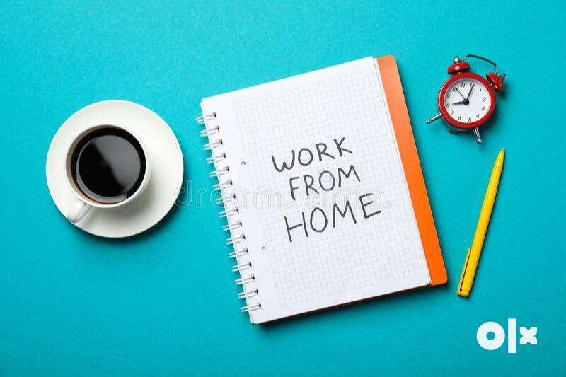 FULL TIME/ PART TIME / WORK FROM HOME ONLINE AND OFFLINE BOTH WORK