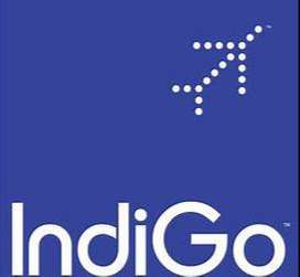 Indigo Airlines Hiring Part Time or Full Time  Job at Airport interest