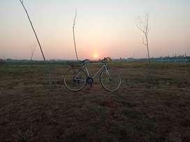 Sepeda balap golden aegle