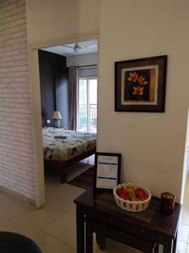 2 BHK Properties for Sale in Noida Extension, Noida