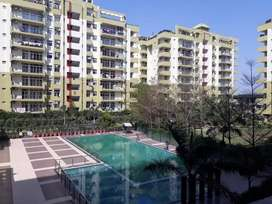 Flats available for sale in Jalandhar heights in all varients
