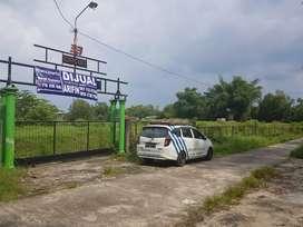 Tanah bagus untuk rumah subsidi di dekat plesungan gondangrejo