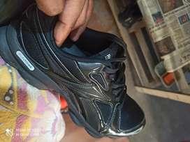 Shoes rebook