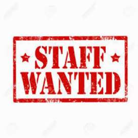 Wanted Lady staff  for wholesale Medical store