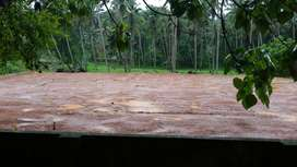 HOUSE FOR RENT AT NEYYATTINKARA, ONLY TWO WHEELER PATH