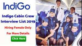 Vacancy on airport AirHostess, Supervisor, Loader Driver House keeping