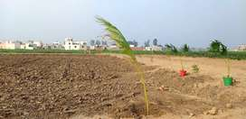 100 gaj  , 2950 rupees per gaj plots for sale at reasonable prices  .