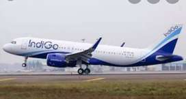 Airport job opened indigo airlines