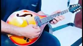 Mandolin For Sale With Carry Bag