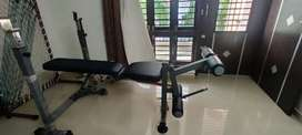 Gym bench with leg extension and leg curl