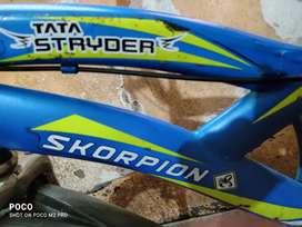 Tata Skorpion cycle
