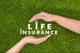 Guruvayoor- insurance sector/degree must/24-35yrs only/field sales job