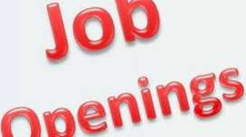 large opening for fresher-exp male staff req. in Medical Co-call now