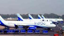 Male or female urgently required in Indigo Airlines