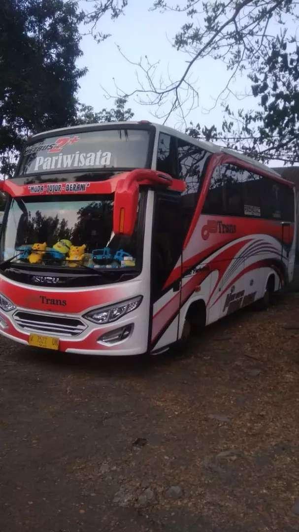 Bus Medium Isuzu Elf NQR71 0