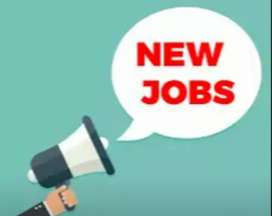 Work as DIGITAL MARKETING executive  and earn 15000 to 20000 monthly