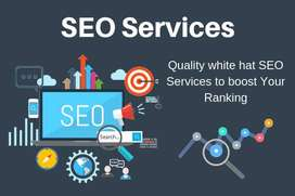 Top Ranking SEO Services in lahore