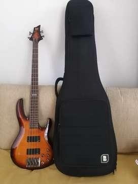 Bass ESP LTD B-254FM