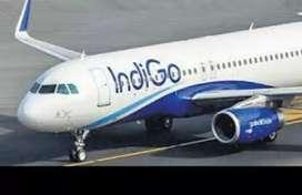 Ground staff in IndiGo Airlines limited site for ground staff