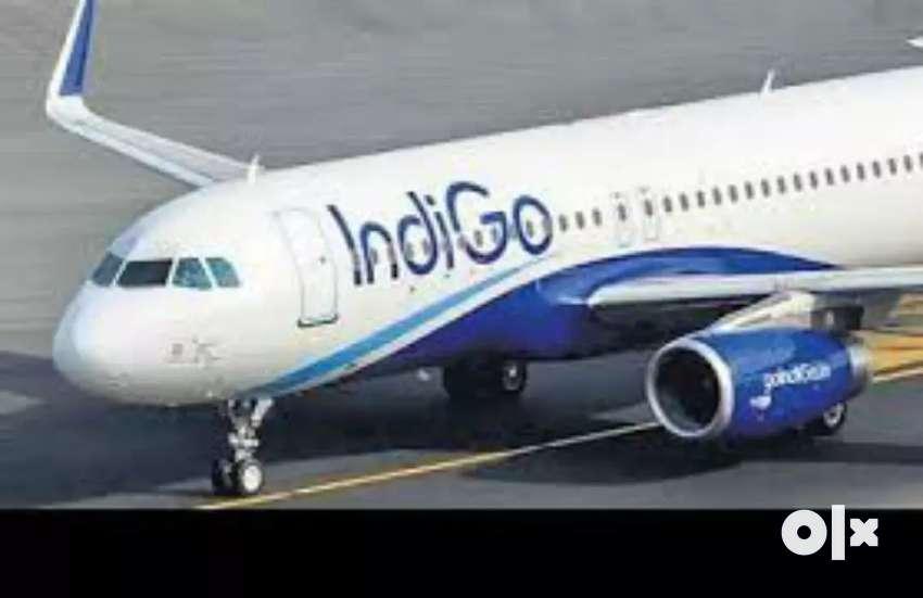 Ground staff in IndiGo Airlines limited site for ground staff 0