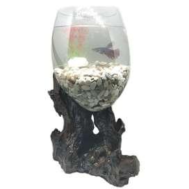 Aquarium Unique