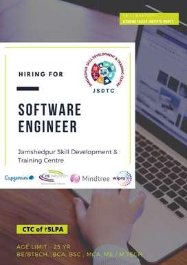 Work as Software Engineer in Top IT Companies.