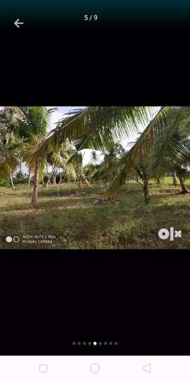 Vivasaya boomi 2 acre 35 lak