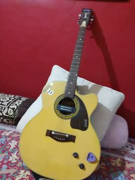 Givson , Guitar