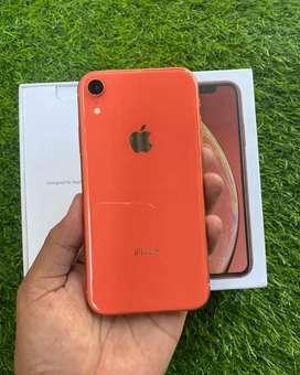 IPhone XR 128Gb Coral Like New Istimewa Muluss No Minus
