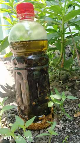 Home made oil