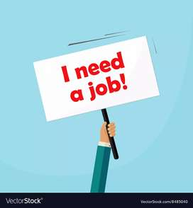 i need a job