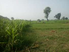 4 Kanal Plot for Sale (Barki Kohrian)