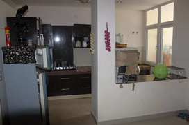 1bhk furnished flat available on canal road.
