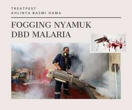 fogging nyamuk malaria demam berdarah serangga kutu busuk tomcat kecoa