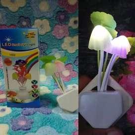 Yang minat lampu jamur