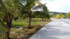 Farm House plots For Sale At Thiruporur To Chengalpet  Road